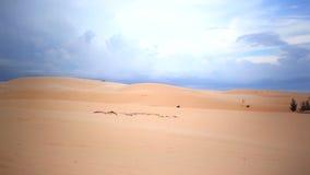 Άσπρος αμμόλοφος άμμου Mui στο ΝΕ, Βιετνάμ Η διάσημη θέση και εντυπωσιακός, φιλτράροντας τον ακολουθώντας πυροβολισμό καμερών, υψ απόθεμα βίντεο