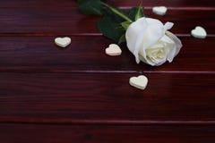 Άσπρος αυξήθηκε και καρδιές Στοκ Εικόνα