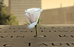 Άσπρος αυξήθηκε στο μνημείο 9-11 Στοκ φωτογραφίες με δικαίωμα ελεύθερης χρήσης