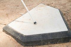 Άσπρος κάλαμος στην εγχώρια βάση Στοκ Εικόνες