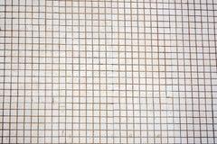Άσπρος και γκρι η πραγματικό φωτογραφία ή το τούβλο υψηλής ανάλυσης τοίχων κεραμιδιών άνευ ραφής στοκ εικόνα