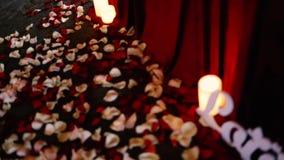 Άσπρος και κόκκινος αυξήθηκε πέταλα στο πάτωμα στο εστιατόριο απόθεμα βίντεο