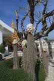 Άσπρος ναός, Wat Rong Khun σε Chiang Rai, Ταϊλάνδη Στοκ Φωτογραφίες