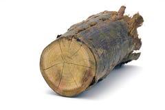 άσπρος ξύλινος κούτσουρ&o Στοκ φωτογραφίες με δικαίωμα ελεύθερης χρήσης