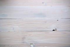 άσπρος ξύλινος σανίδων Στοκ Εικόνες