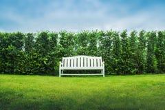 Άσπρος πάγκος στον πράσινο κήπο Στοκ Εικόνα