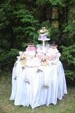 Άσπρος πίνακας με τα γλυκά και νόστιμα τρόφιμα στο πάρκο στοκ εικόνες