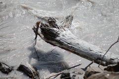 Άσπρος ποταμός που ρέει κοντά στα βουνά στοκ εικόνες