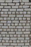Άσπρος τουβλότοιχος Στοκ Φωτογραφία