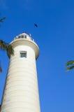 Άσπρος φάρος ενάντια στον ουρανό, το φοίνικα και το πουλί Στοκ Φωτογραφίες