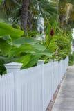 Άσπρος φράκτης κήπων στη Key West Στοκ Φωτογραφία