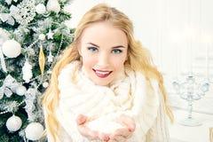 άσπρος χειμώνας στοκ εικόνες