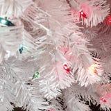 Άσπρο δέντρο Στοκ Εικόνα