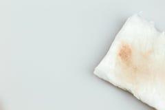 Άσπρο βαμβάκι Στοκ εικόνα με δικαίωμα ελεύθερης χρήσης