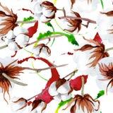Άσπρο βαμβάκι Softe Floral βοτανικό λουλούδι Άνευ ραφής πρότυπο ανασκόπησης Στοκ Εικόνα