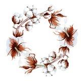 Άσπρο βαμβάκι Softe Floral βοτανικό λουλούδι Τετράγωνο διακοσμήσεων συνόρων πλαισίων Στοκ Εικόνα