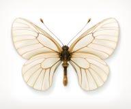 Άσπρο εικονίδιο πεταλούδων Στοκ φωτογραφία με δικαίωμα ελεύθερης χρήσης
