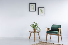 Άσπρο εσωτερικό με την πράσινη καρέκλα κατσαρού λάχανου Στοκ Φωτογραφία