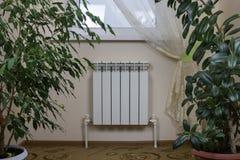 Άσπρο θερμαντικό σώμα θέρμανσης, παράθυρο και houseplants στοκ εικόνα