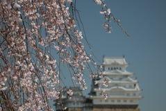 Άσπρο κάστρο Himeji Ιαπωνία τσικνιάδων Στοκ Εικόνες