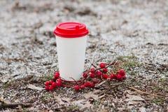 Άσπρο και κόκκινο φλιτζάνι του καφέ εγγράφου στο έδαφος με rowanberry Στοκ εικόνα με δικαίωμα ελεύθερης χρήσης