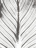 Άσπρο και μαύρο υπόβαθρο Grunge, σύσταση Στοκ Φωτογραφίες