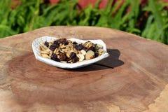 Άσπρο κεραμικό πιάτο που γεμίζουν με το μίγμα ιχνών καρυδιών Στοκ φωτογραφίες με δικαίωμα ελεύθερης χρήσης