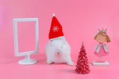 Άσπρο κουνέλι με το κόκκινα καπέλο Χριστουγέννων και το δέντρο chrismas και άσπρο πλαίσιο εικόνων, διάστημα αντιγράφων για το κεί στοκ φωτογραφία