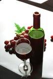 άσπρο κρασί γυαλιού μπουκαλιών ανασκόπησης Στοκ Εικόνες