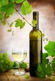 άσπρο κρασί ζωής ακόμα Στοκ Εικόνες