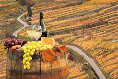 Άσπρο κρασί με το βαρέλι στον αμπελώνα σε Wachau, Spitz, Αυστρία στοκ φωτογραφία με δικαίωμα ελεύθερης χρήσης