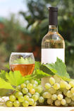 άσπρο κρασί σταφυλιών σύνθ&ep στοκ εικόνα
