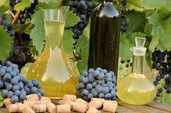 Άσπρο κρασί στην καράφα και κόκκινο κρασί στο μπουκάλι στο υπόβαθρο αμπελώνων Στοκ Εικόνες