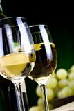 άσπρο κρασί τυριών Στοκ εικόνες με δικαίωμα ελεύθερης χρήσης