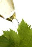 άσπρο κρασί Στοκ φωτογραφίες με δικαίωμα ελεύθερης χρήσης