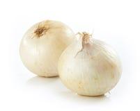Άσπρο κρεμμύδι στοκ φωτογραφία με δικαίωμα ελεύθερης χρήσης