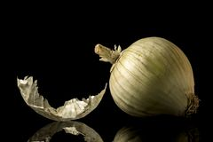 Άσπρο κρεμμύδι στοκ φωτογραφία