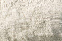 Άσπρο μάλλινο δέρας προβάτων στοκ εικόνες