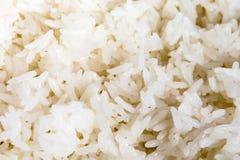 Άσπρο μαγειρευμένο ρύζι Στοκ Εικόνες