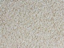 Άσπρο μακροχρόνιο υπόβαθρο ρυζιού, άψητο στοκ φωτογραφία με δικαίωμα ελεύθερης χρήσης