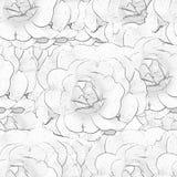 Άσπρο μονοχρωματικό άνευ ραφής υπόβαθρο με τα τριαντάφυλλα Στοκ Εικόνες