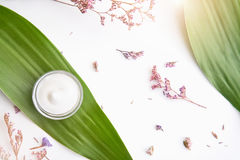 Άσπρο μπουκάλι κρέμας που τοποθετούνται, κενή συσκευασία ετικετών για τη χλεύη επάνω σε ένα πράσινο υπόβαθρο φυλλώματος και λουλο Στοκ φωτογραφία με δικαίωμα ελεύθερης χρήσης