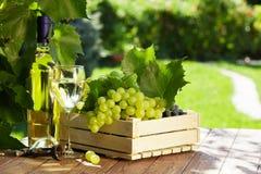 Άσπρο μπουκάλι, γυαλί, άμπελος και σταφύλια κρασιού Στοκ φωτογραφία με δικαίωμα ελεύθερης χρήσης