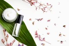 Άσπρο μπουκάλι κρέμας που τοποθετούνται, κενή συσκευασία ετικετών για τη χλεύη επάνω σε ένα πράσινο υπόβαθρο φυλλώματος και λουλο Στοκ εικόνα με δικαίωμα ελεύθερης χρήσης