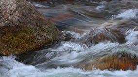 Άσπρο νερό ρευμάτων βουνών γλυκού νερού hd απόθεμα βίντεο
