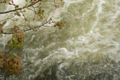 Άσπρο νερό Στοκ Φωτογραφία