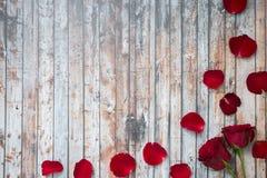 Άσπρο ξύλινο υπόβαθρο με τα τριαντάφυλλα και τα πέταλα Στοκ Εικόνα