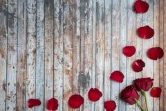 Άσπρο ξύλινο υπόβαθρο με τα τριαντάφυλλα και τα πέταλα Στοκ Εικόνες