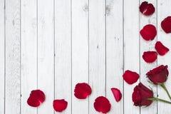 Άσπρο ξύλινο υπόβαθρο με τα τριαντάφυλλα και τα πέταλα Στοκ φωτογραφία με δικαίωμα ελεύθερης χρήσης