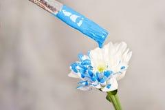 Άσπρο λουλούδι χρωμάτων χεριών Στοκ Φωτογραφία
